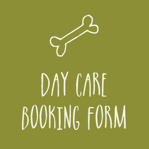 day-care-booking